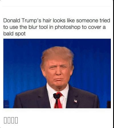 Donald Trump Memes Google Search Trump Funny Donald Trump