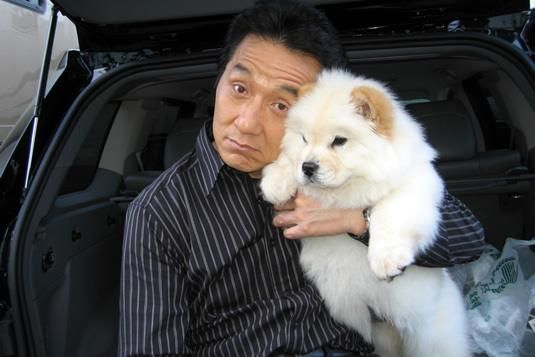 Jackie Chan With A Chow Chow Chow Dog Puppy Boo The Dog Jackie