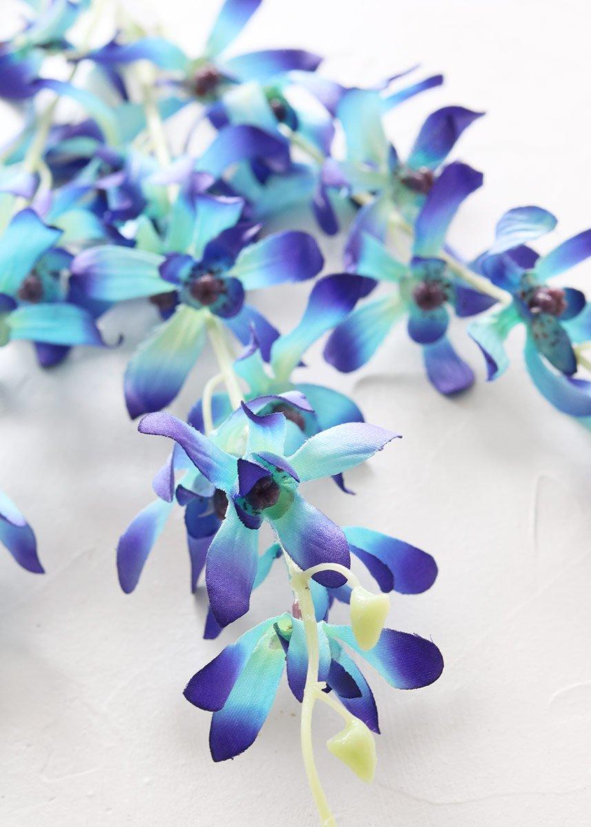 Mini Dendrobium Orchid Spray in Blue