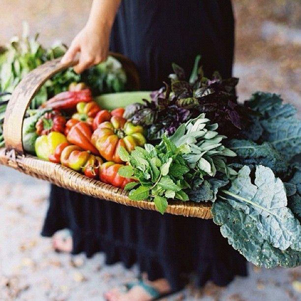 Farmers Market / Image via Karen Wise #fall #autumn #market #food