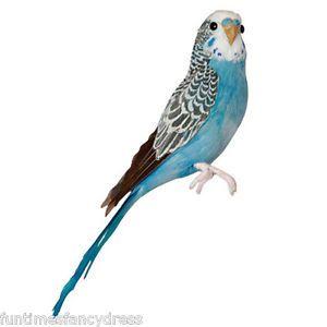 6 Realistic PARAKEET Bird Replica PROP FURRY ANIMAL Toy ck1001 ...