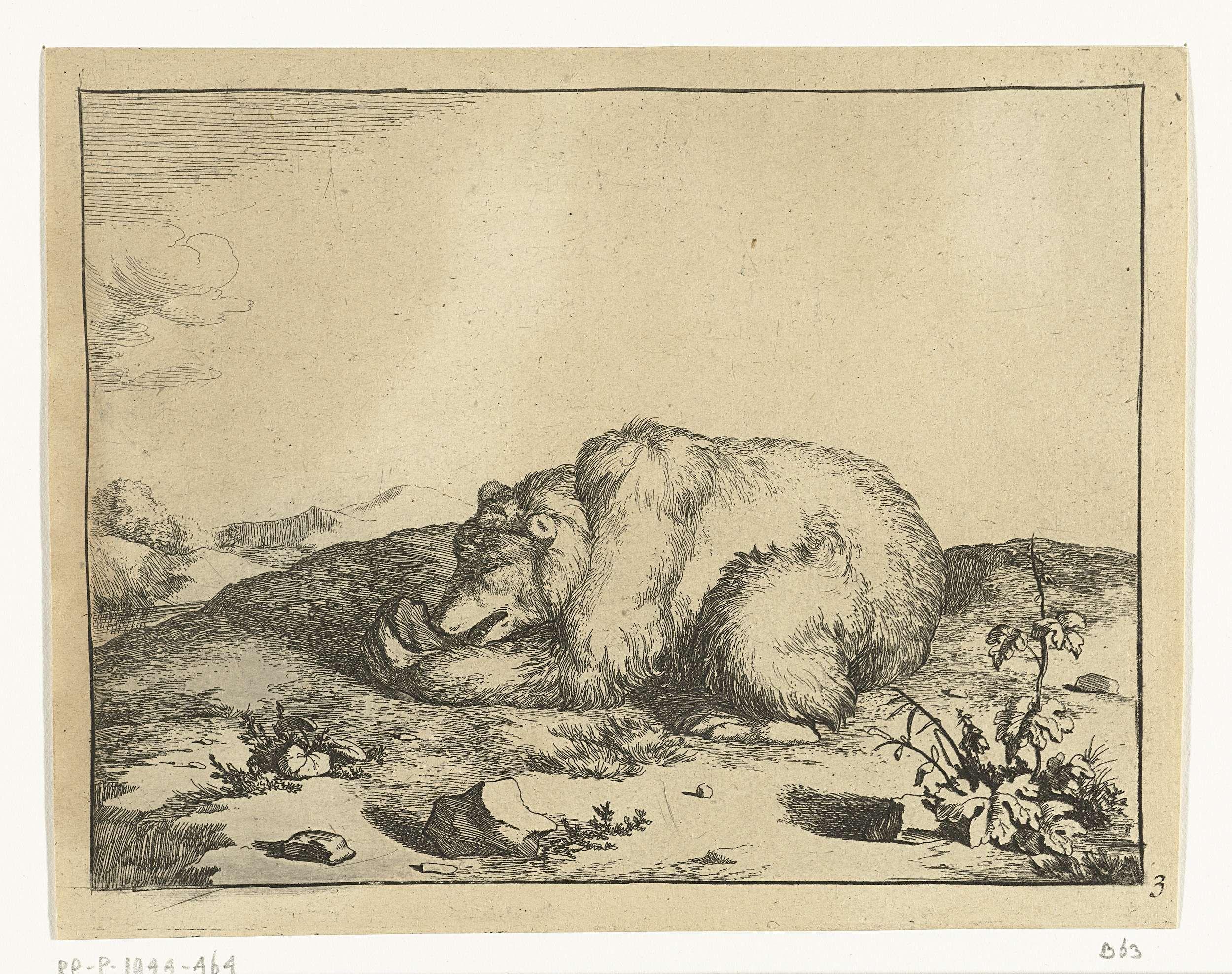 Marcus de Bye | Liggende beer, iets etend uit zijn linker poot, Marcus de Bye, Marcus Gerards (I), 1664 |
