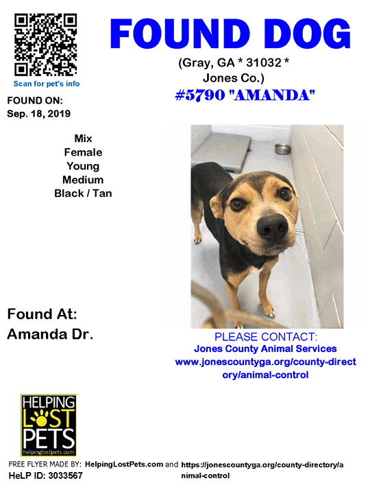 Dogs Found In Georgia