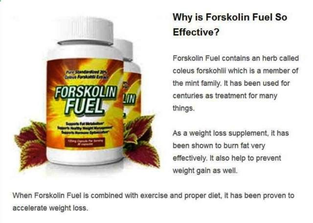 Forskolin pp2a