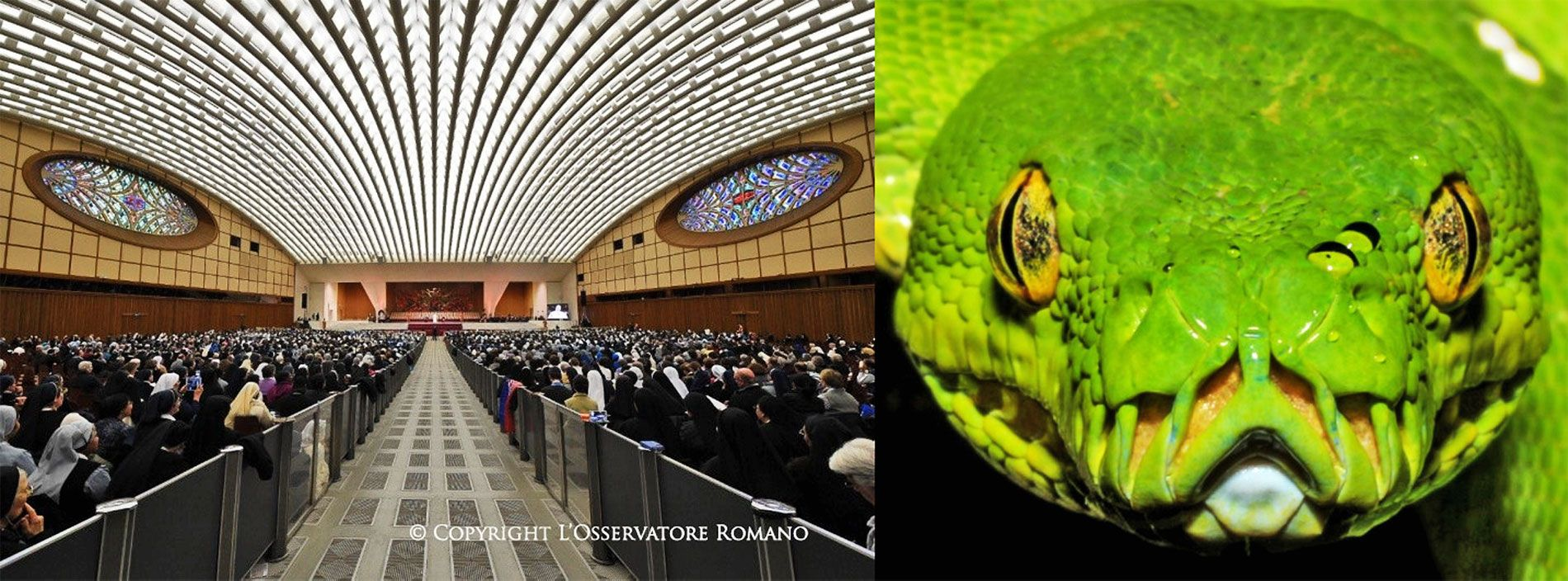 """Pope Francis against \'fake news\': """"We need to unmask snake-tactics ..."""