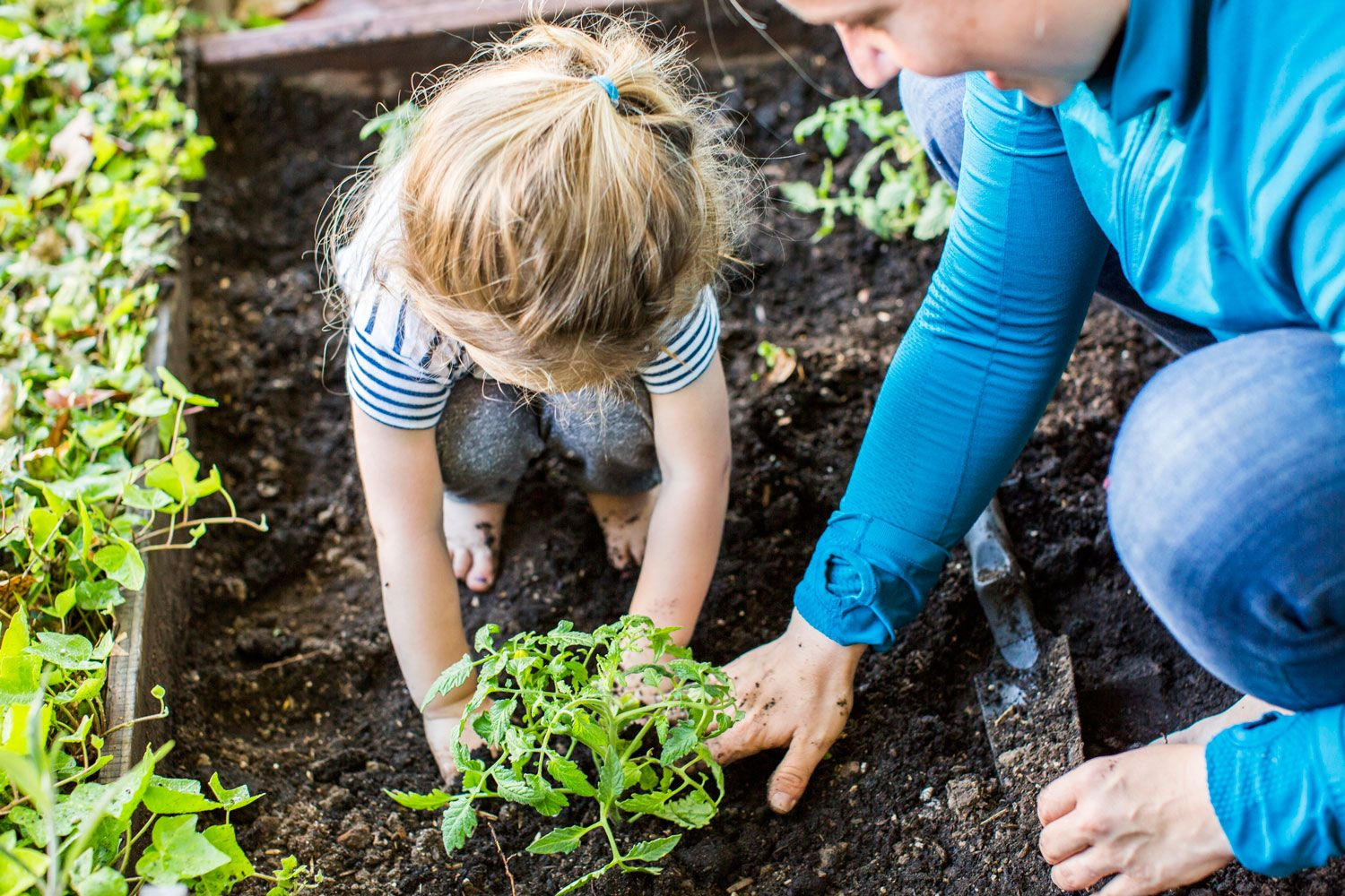 What you should do in the garden in September is part of garden Kids Things To Do - Everything you should do in your garden this September to help your garden thrive this spring