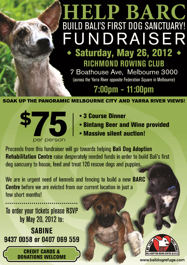This Event To Raise Funds For Bali S First Dog Shelter Has Been And Gone And Was Not In Bali But Rather In Melbourne Australi Shelter Dogs Bali Dogs