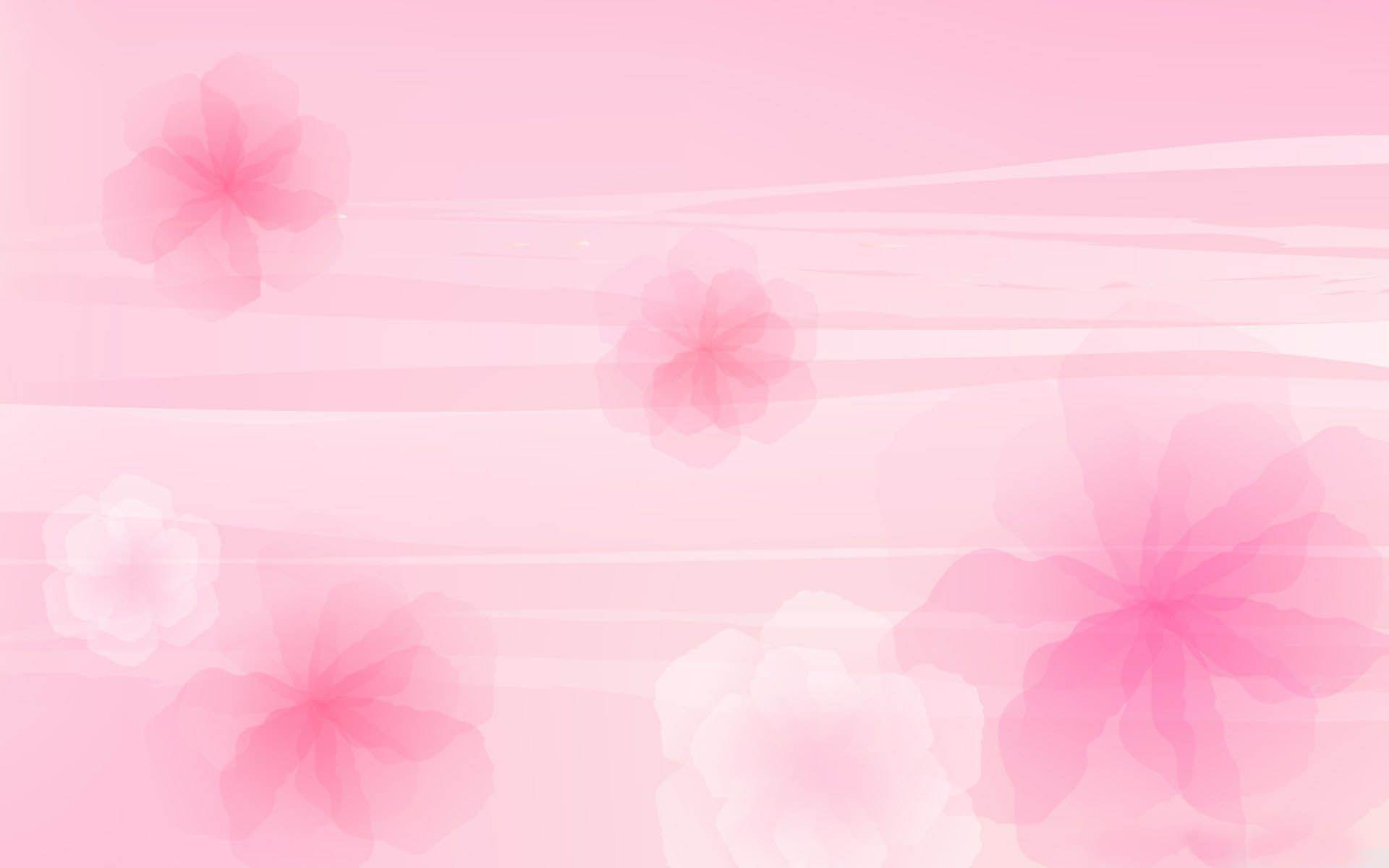 Pink Flowers Backgroundg 19201200 Design Illustration