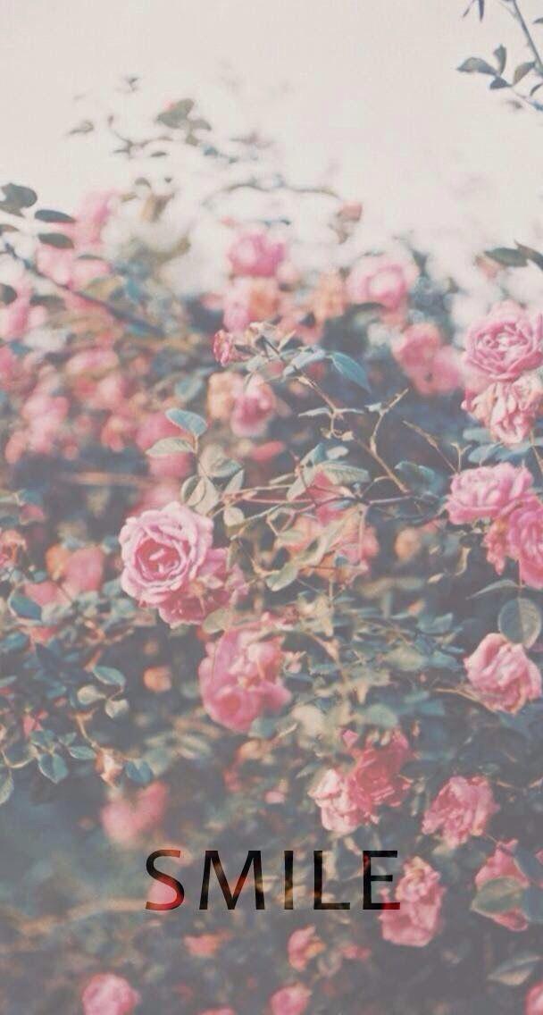 Pink Floral Lock Screen Pink Wallpaper Rosas Naturaleza Rosales