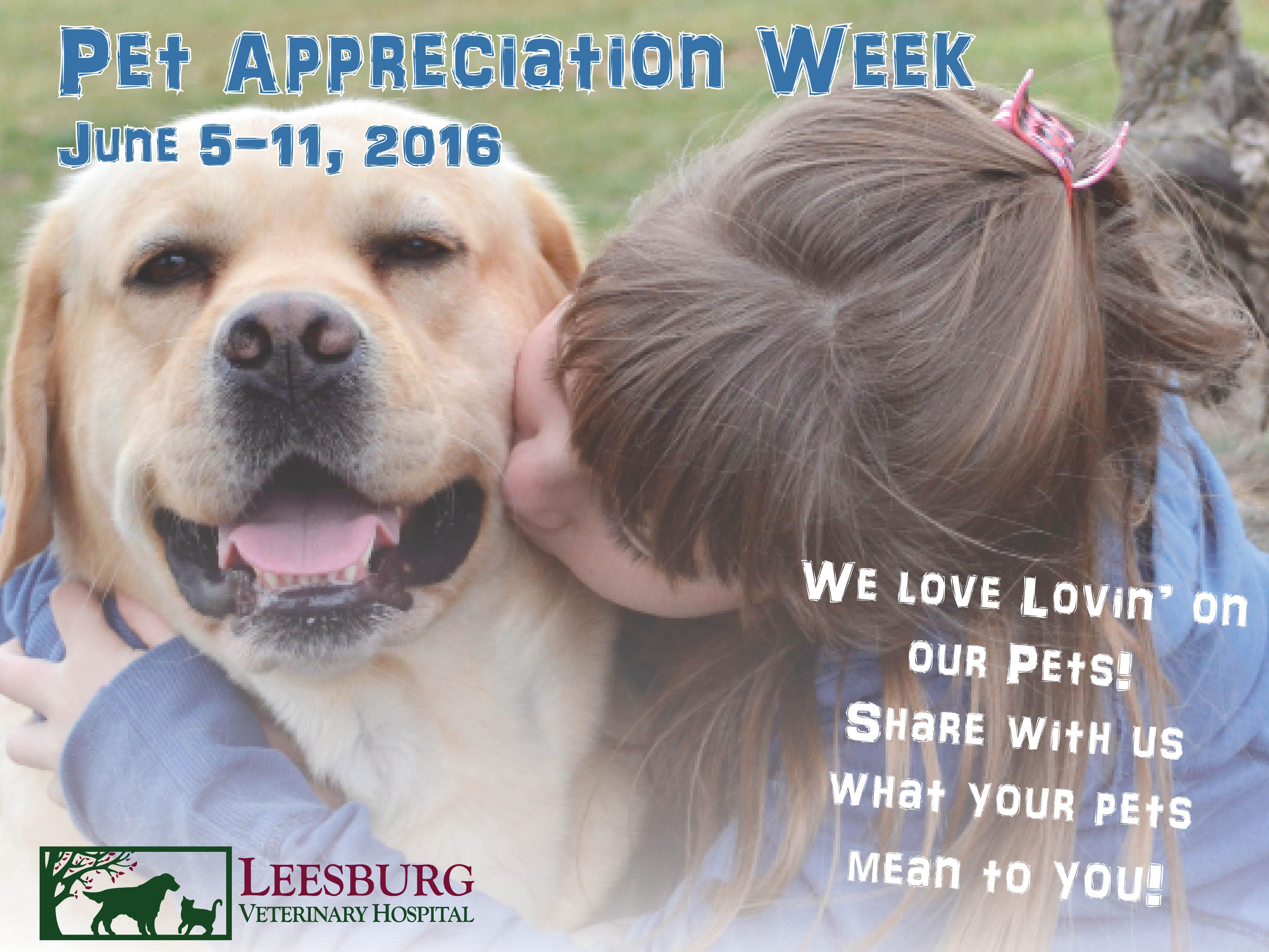 Happy Pet Appreciation Week We Love All Of Our Pet Patients Great And Small With Images Veterinary Hospital Animal Hospital Happy Animals