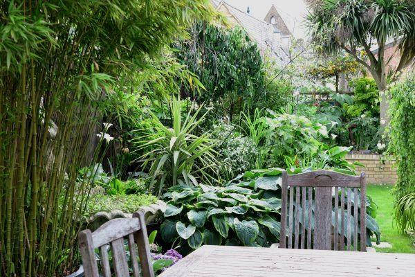Contemporary Small Garden Design Ideas in 2020 | Small ...