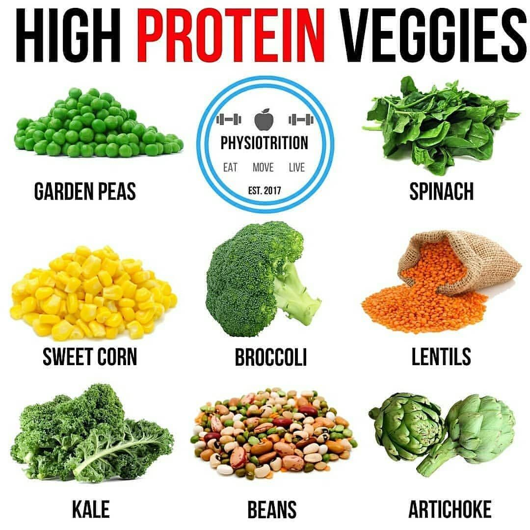 """""""PROTEIN VEGGIES BY physiotrition 🍗 🔥Here are 8 examples"""