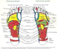 Productos y Servicios para tus pies y cuerpo: ALGO SOBRE REFLEXOLOGÍA que es MUY INTERESANTE de conocer