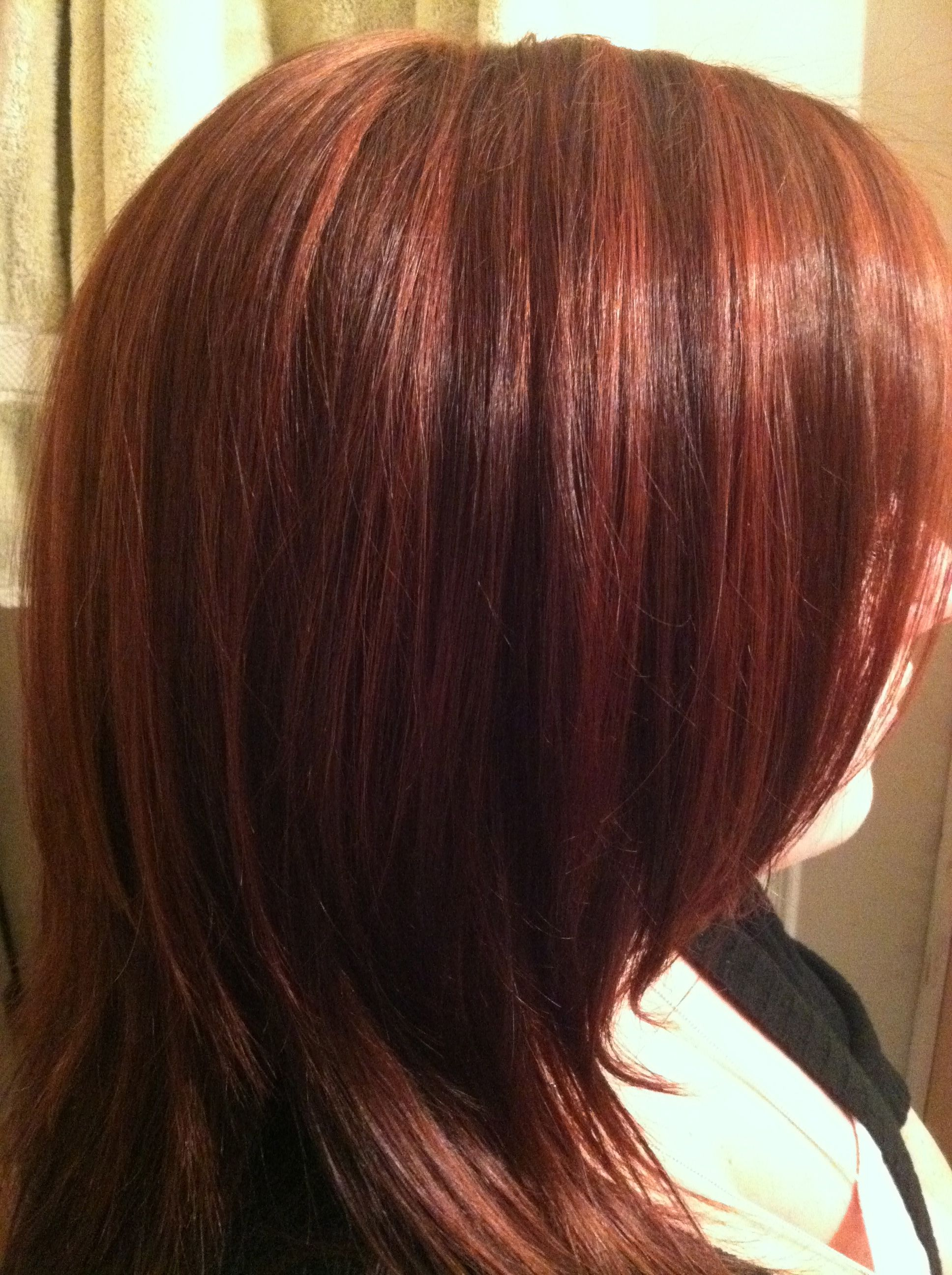 Red Lowlights W Brown Hair I Ve Done Colors I Ve Had
