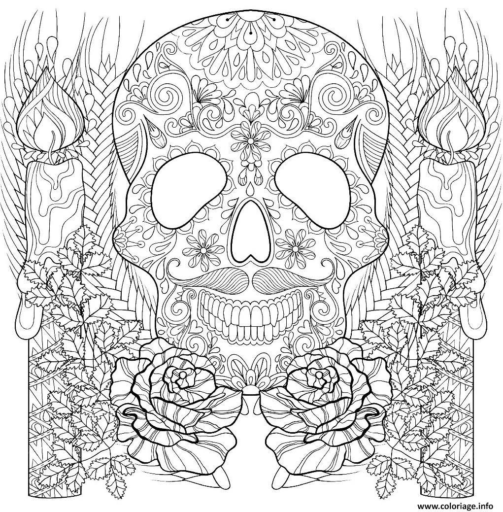 Épinglé sur Squelette