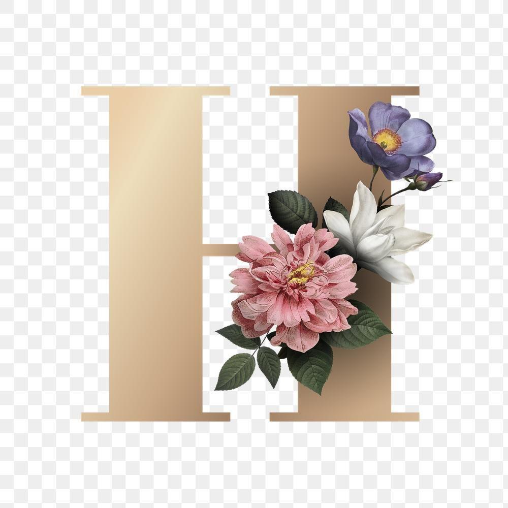 Classic And Elegant Floral Alphabet Font Letter H Transparent Png Free Image By Rawpixel Com Manotan Lettering Alphabet Fonts Fonts Alphabet Floral Letters
