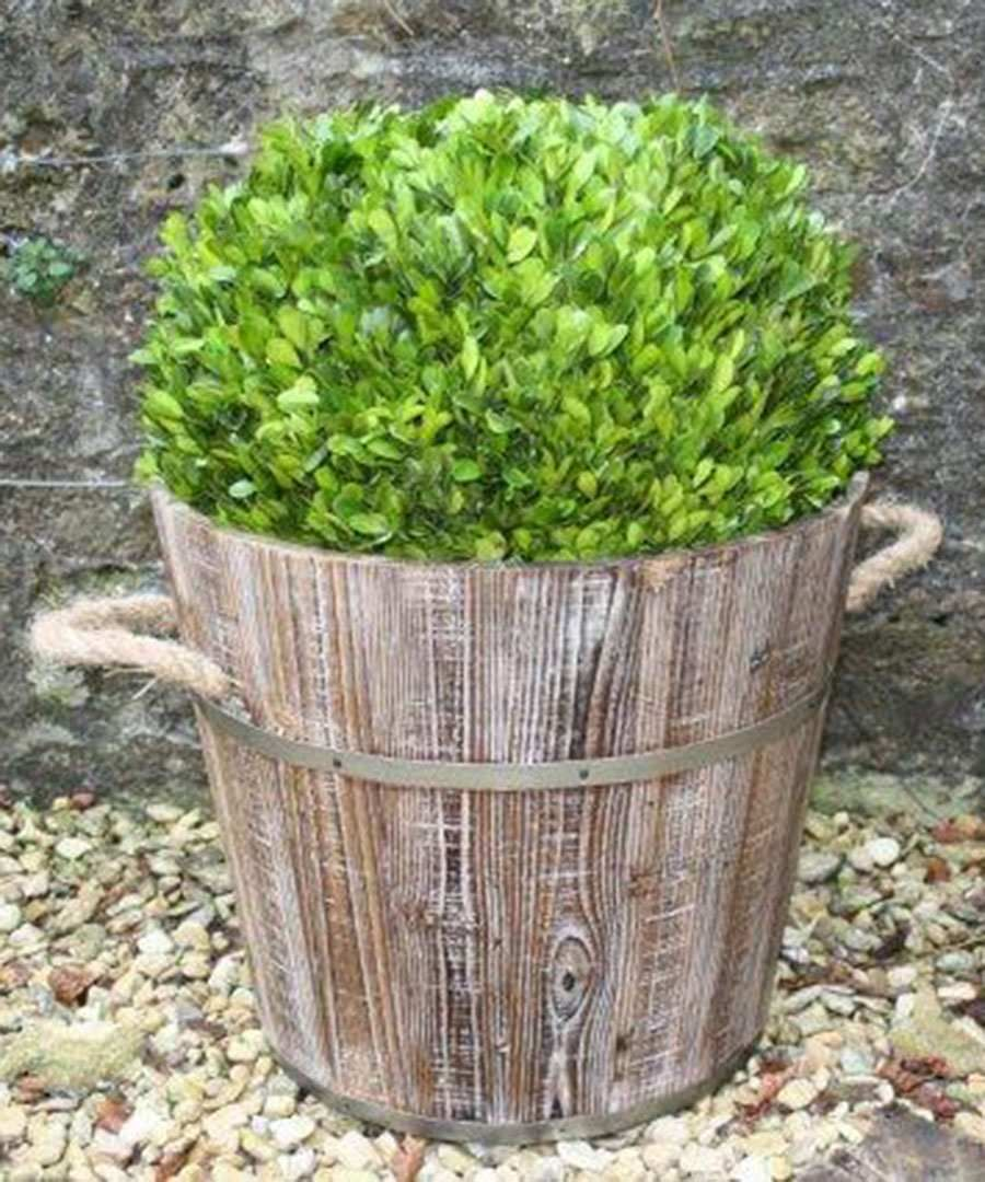 Rustic Garden Burntwood barrel, Designer Homeware Sale, Rustic Garden Collection , Secret Sales