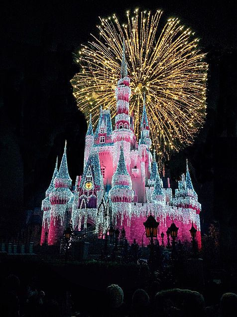 cinderella castle #fireworks #Dream #magical #disney #disneyland #princess #castle #FF #followback #outdoors #outdoor