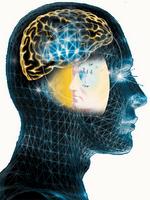 Funciones ejecutivas y memoria de trabajo