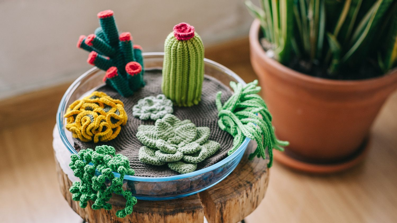 Crochet Your Own Terrarium (Including 7 Different Succulents)