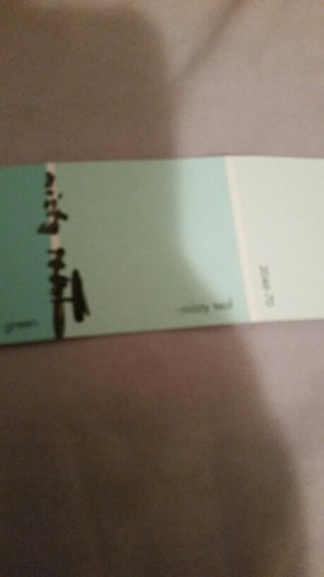 The color I want my room misty teal