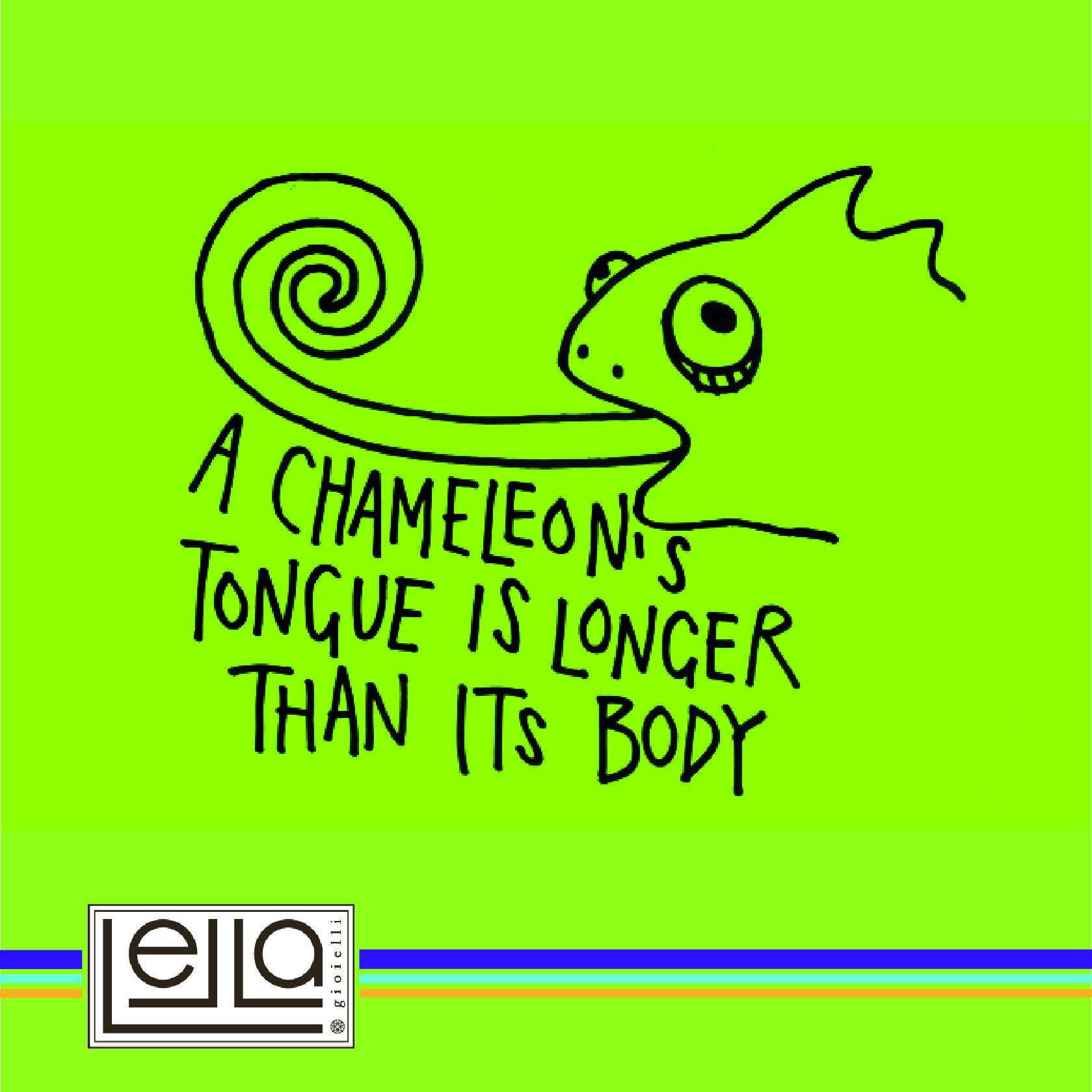 Sai che il camaleonte ha la lingua lunga quanto il suo corpo?