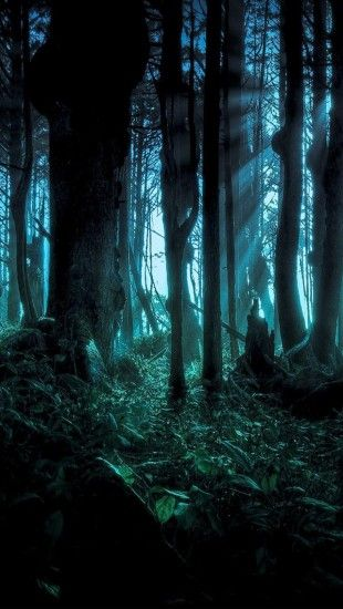 Cool Colorful Wallpapers Similar To Iphone X Spooky Woods Landscape Iphone Wallpapers In 2019
