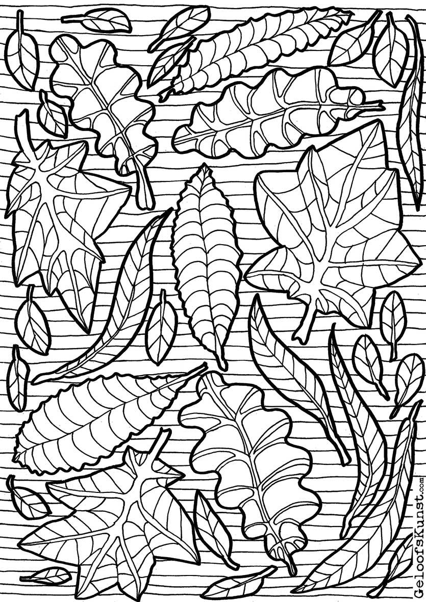 Http Coloringtoolkit Com Leaves Colouring Page Coloring If You Re In The Market For The Most Popular Color Illustraties Krijt Tekeningen Kleurplaten