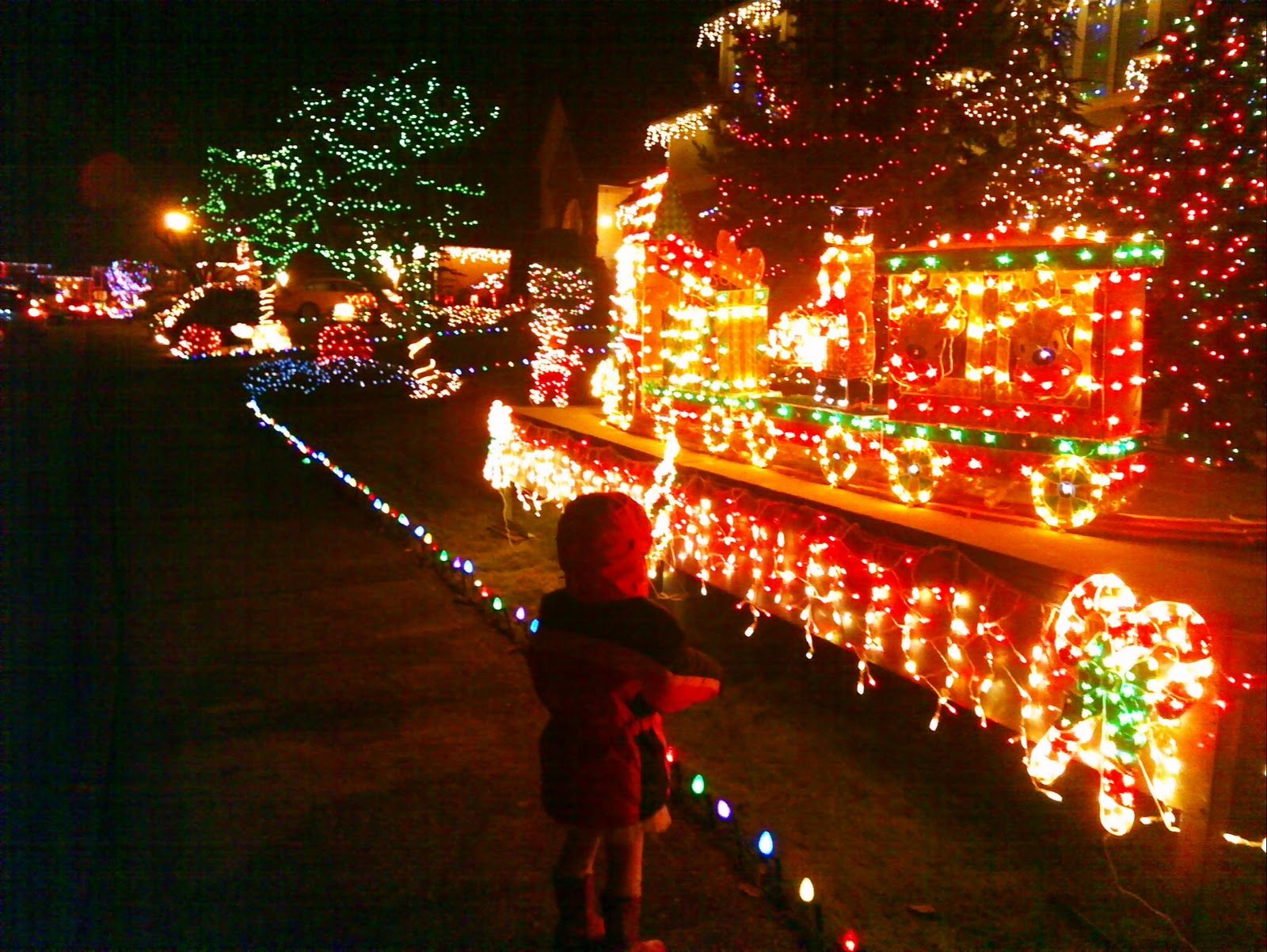 Christmas Activities Seattle.A Seattle Girl S Guide To Federal Way Christmas Lights At