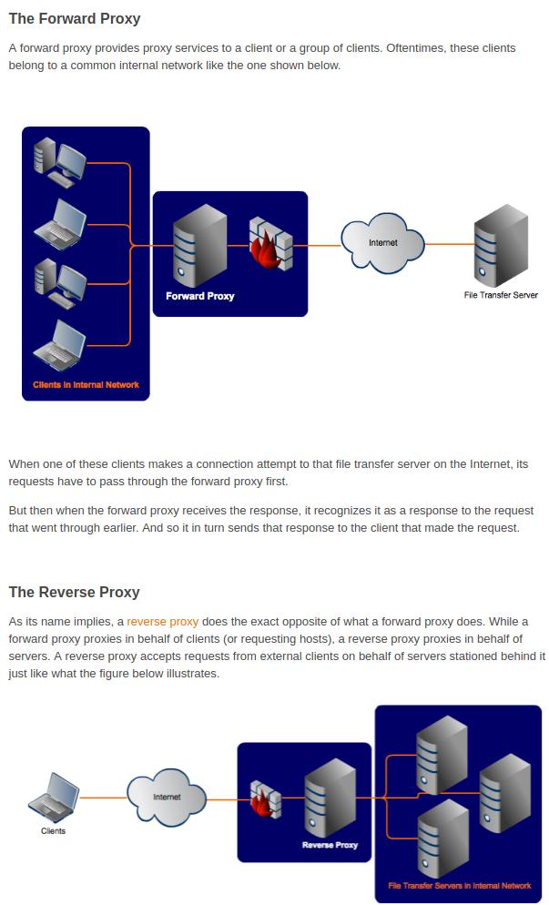 Forward Proxy vs  Reverse Proxy Server   Technology, Web
