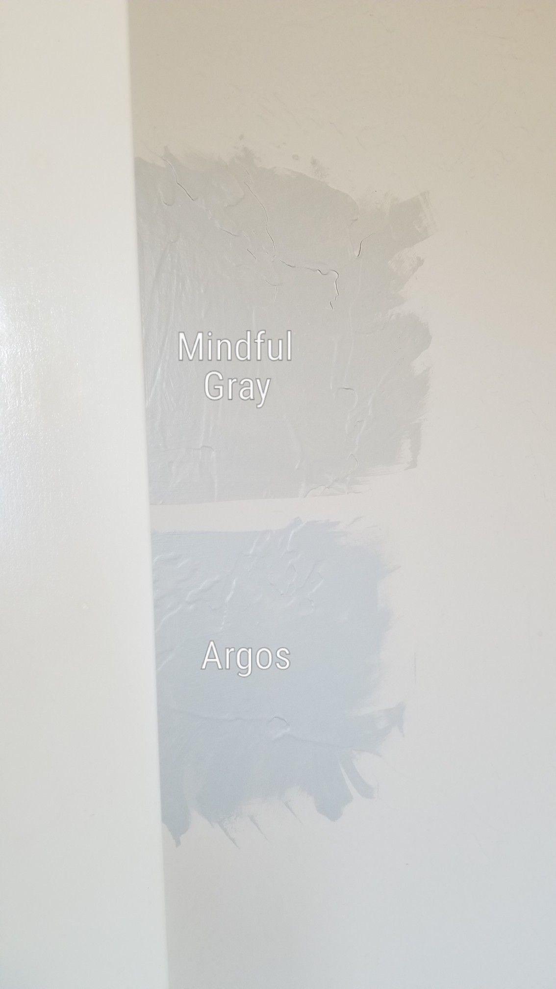 Best Mindful Gray Vs Argos Sherwin Williams Master Bedroom 400 x 300