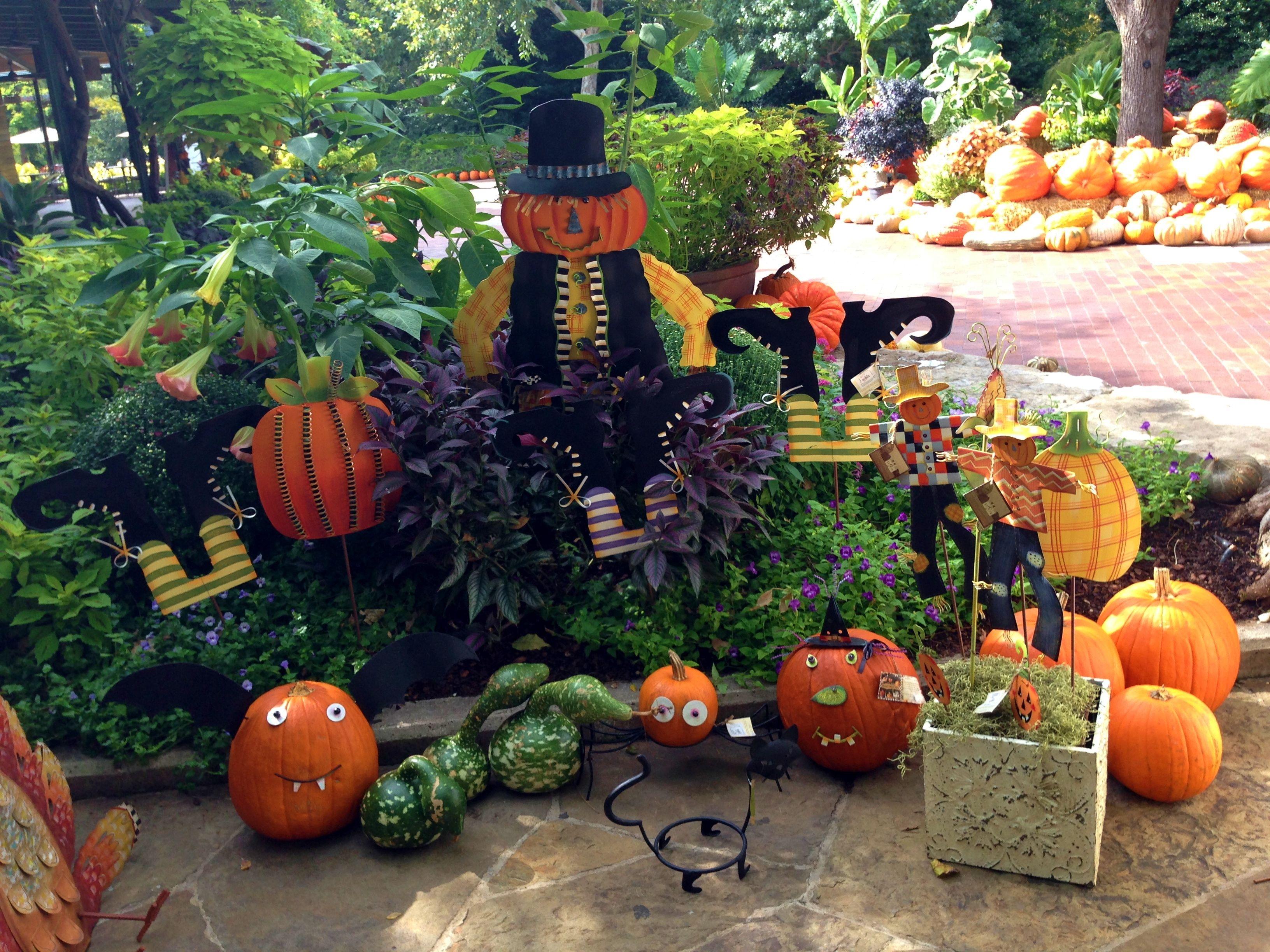 #Halloween goodies at the Dallas Arboretum gift shop!