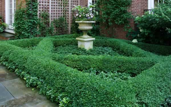 A formal parterre garden with a teak wall trellis with urn and pedestal