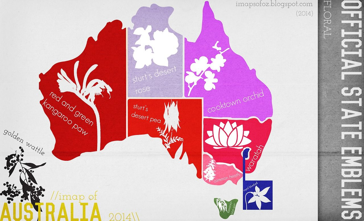 Floral Emblems Of Each Australian State Australian