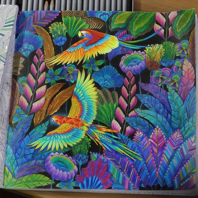 From Coloring Book Tropical Wonderland