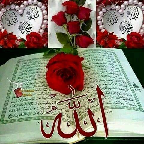 Pin By Sabz Ali On Asif Islamic Pictures Quran Recitation Allah Islam