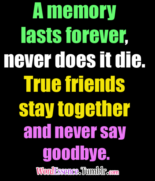 Sad I Miss You Quotes For Friends: Best 25+ Never Say Goodbye Ideas On Pinterest