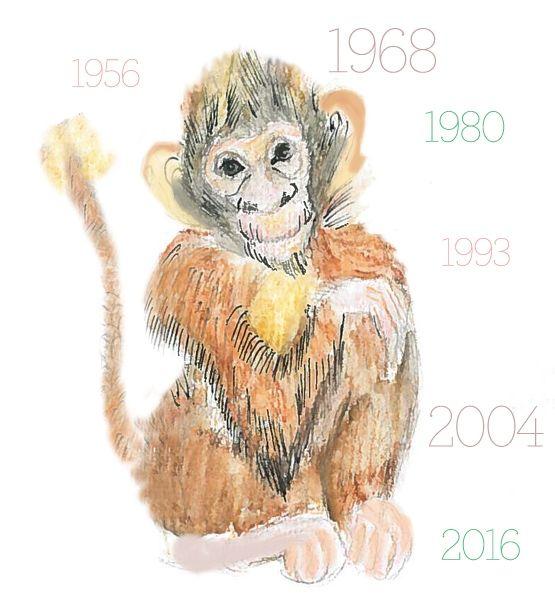 Pin By Alina Alina On Zodiac Pet Signs Year Of The Monkey Chinese Zodiac