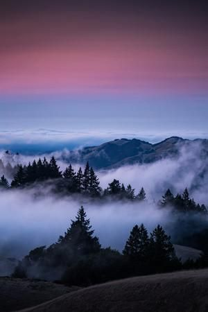Dad o'rourke's bench is one of the best places to watch sunset or sunrise in the bay area. Gateway To Heaven Beautiful Sunset And Fog At Mount Tamalpais California Photographic Print Vincent James Art Com Amazing Nature Photography Nature Photography Trees Beautiful Photography Nature