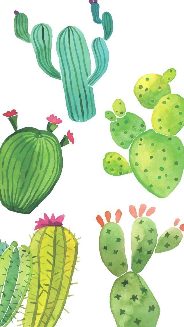Cute Cactus Background Wallpapers Fondos De Cactus Fondo De