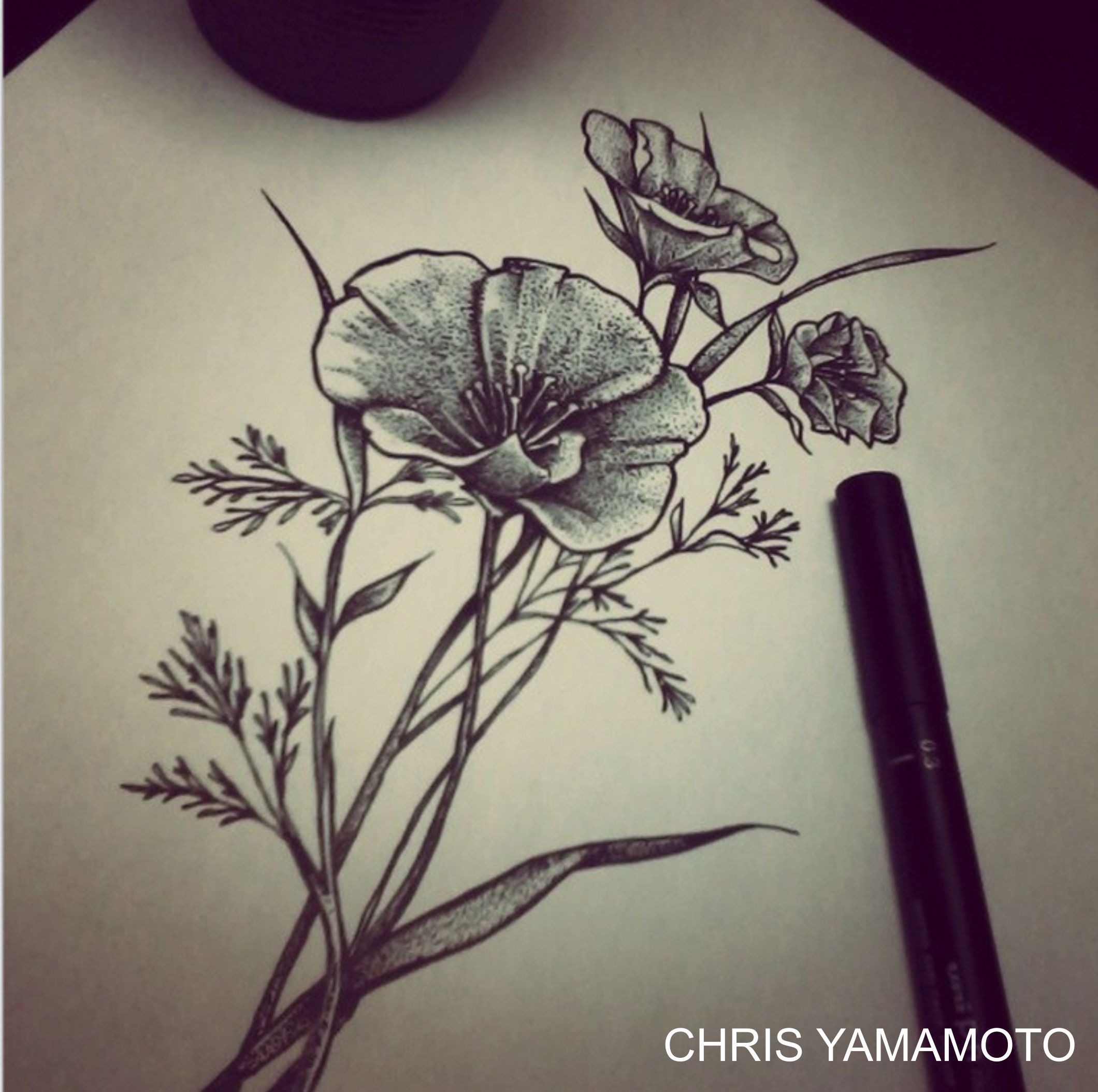 Flower Sketch Tattoo By Chrisyamamoto Dessin De Fleur Pinterest