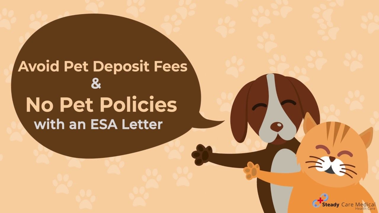 Now You can Avoid Additional Pet Deposit Fees with an ESA