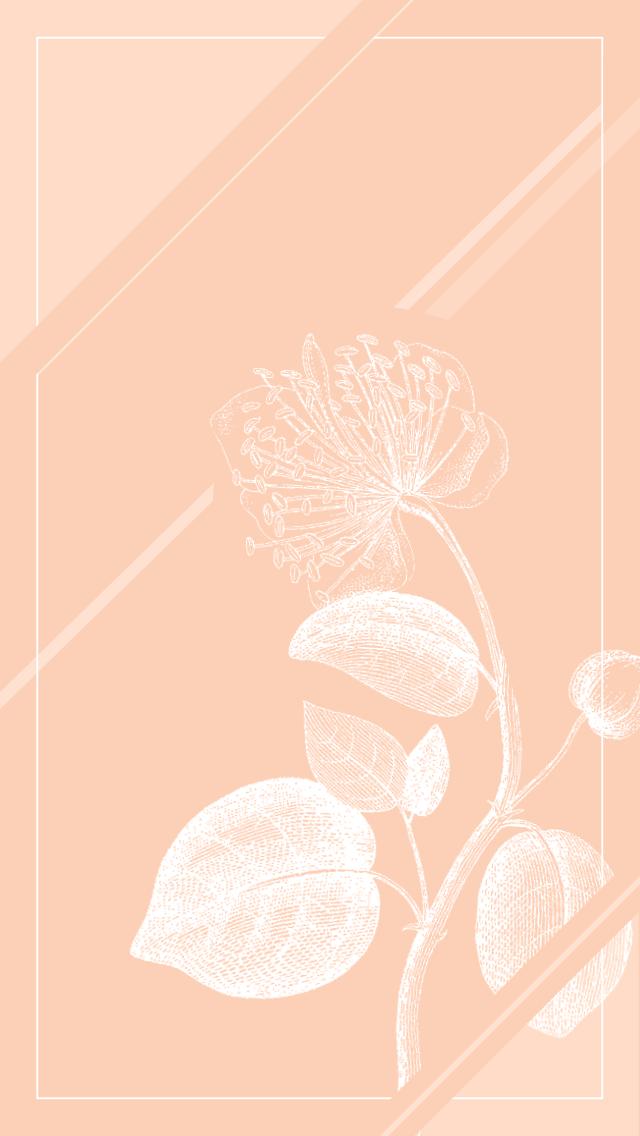 Coral peach white botanical floral iphone wallpaper