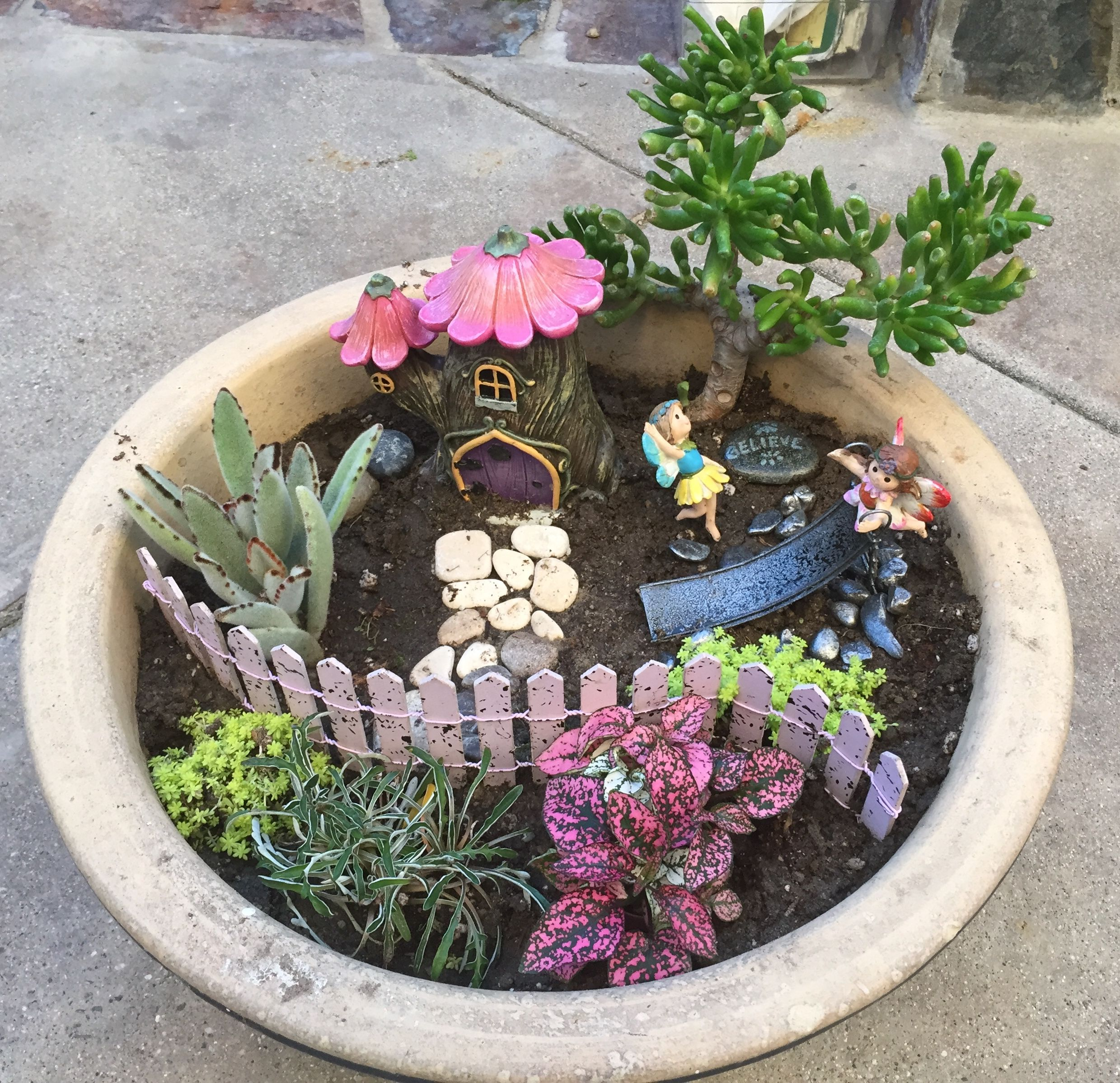 Fairy garden in a pot.