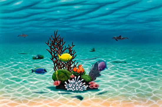 Underwater garden via painting for Underwater mural ideas