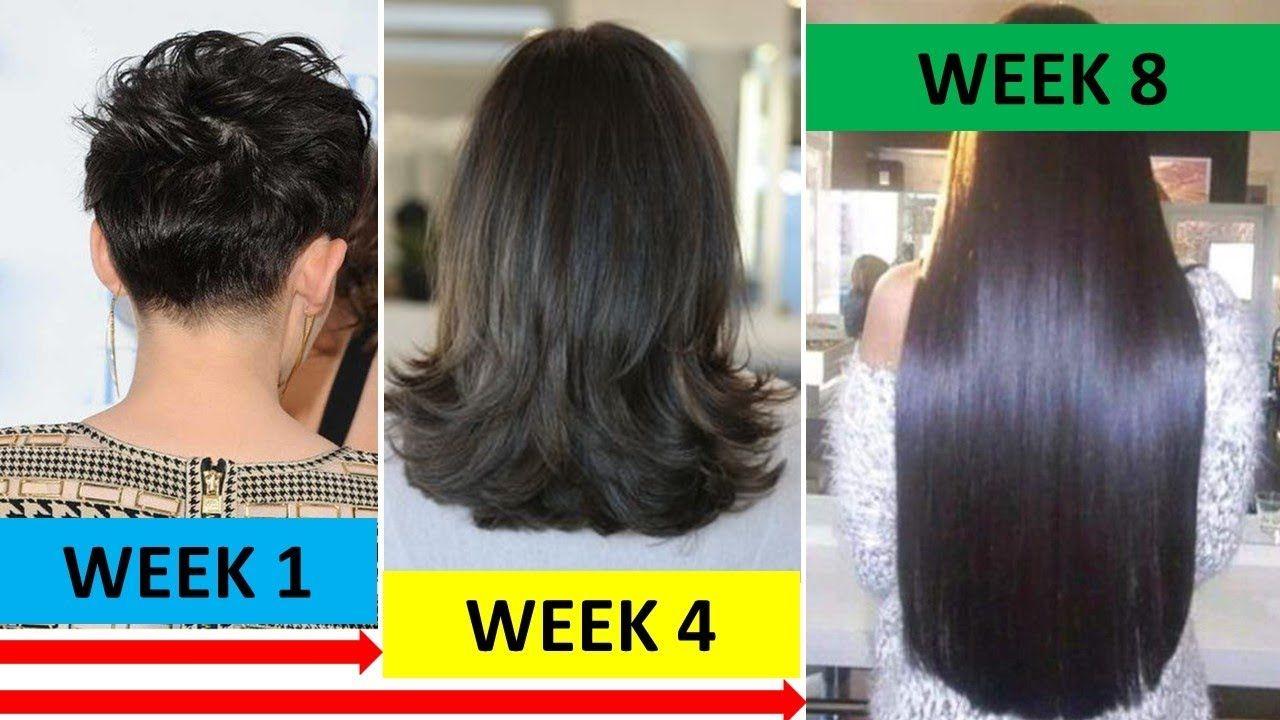 Omg Double Hair Growth In 8 Weeks Long Hair Thick Hair