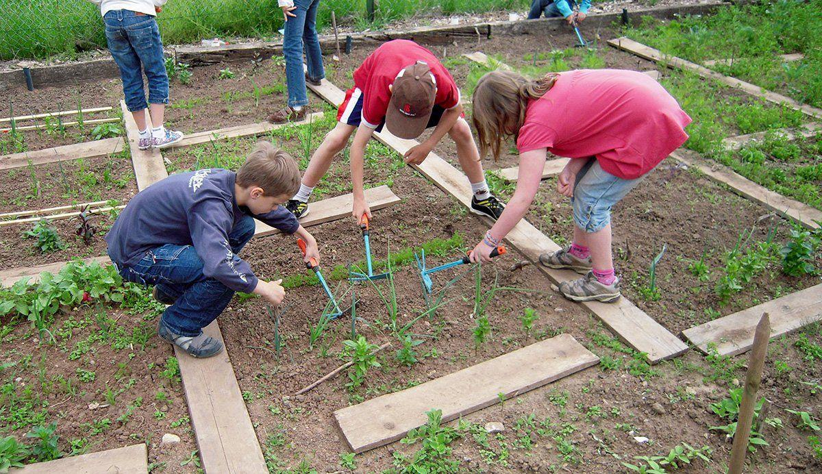Children exposed to school gardens and school gardening ...