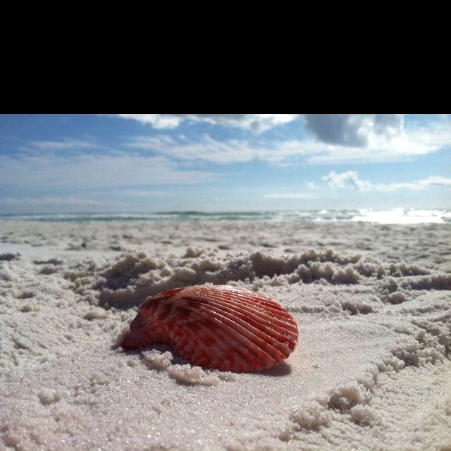 Perdido Key State Park: Life's A Beach! In Destin, Fl