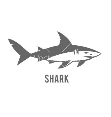 Monochrome of stylized shark isolated vector