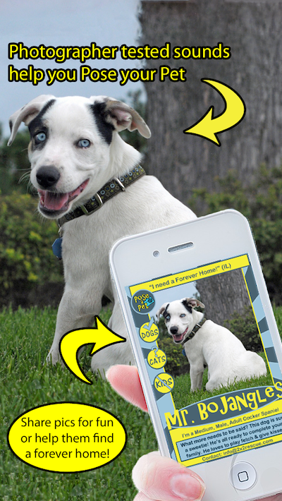 Take Great Pics of Your Pet With This App and make great